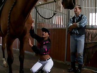 Horse handjob Veterinary girl